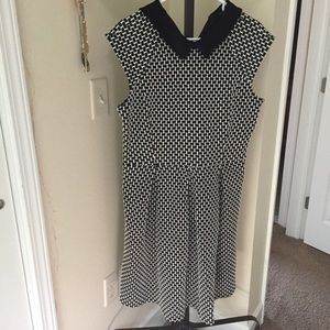 Ann Taylor Dresses & Skirts - Ann Taylor Collar Fit and Flare Dress