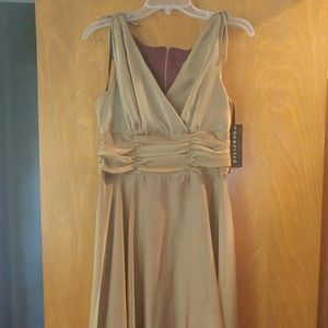 Dresses & Skirts - Gold Dress Brand Connected Apparel BNWT