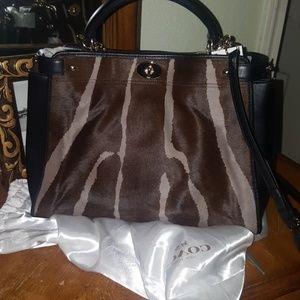 Coach purse (authentic)