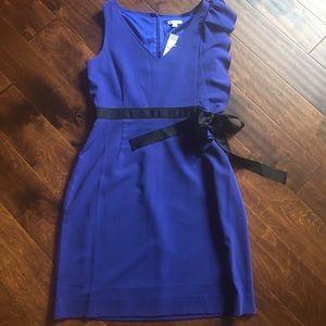New York & Company Dresses & Skirts - Lovely Blue Ruffle Shoulder Dress size12
