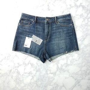 PAIGE Pants - NWT Paige Margot High Waisted Shorts