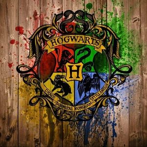 Other - 📦🎁Harry Potter Mistery Box. 3-4 products
