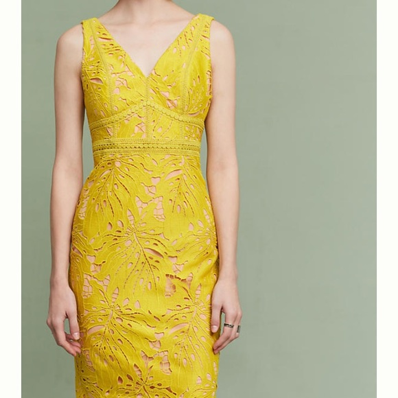 96eb98fb7d04 maeve Dresses | Gardenia Lace Column Dress | Poshmark
