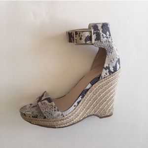 """Calvin Klein """"Snake Print"""" Shoes"""
