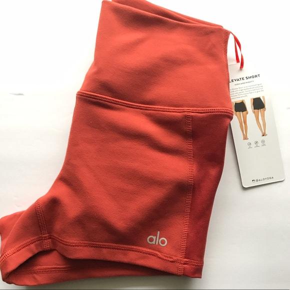Sun Baked Ali Yoga Shorts Size