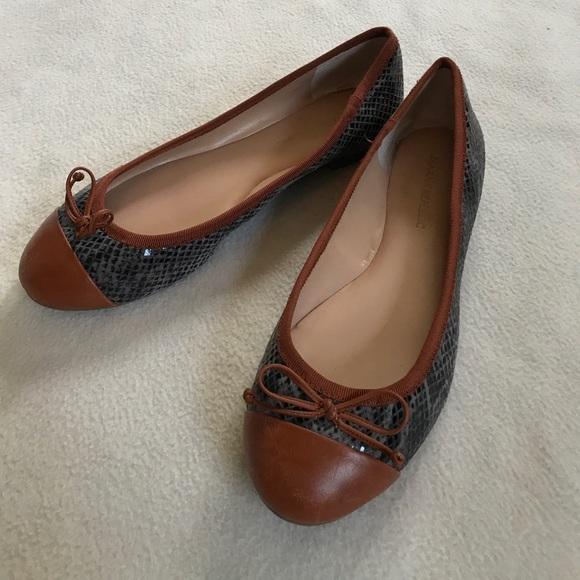 Dark Brown Snakeskin Shoes