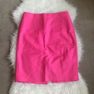 J.Crew Skirt Size 10