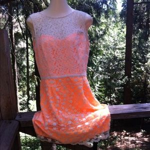 Just Taylor lace over satin party dress