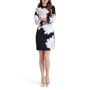 Ted Baker Kida Floral Collar dress