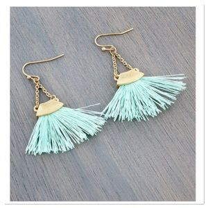 🎉HP🎉.  Tassel Earrings