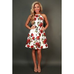 Dresses & Skirts - Backless Roses are Red Fit & Flare Dress