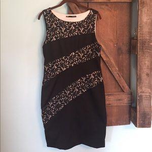 Women\'s Black Maurices Lace Dress on Poshmark