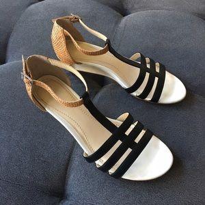 Calvin Klein Ellie Cale Wave Fish Sandal •EUC 7.5•