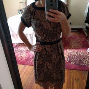 Nanette lepore lace dress size 2