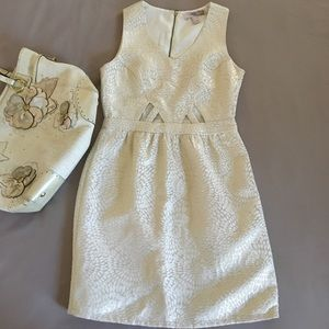 Shimmering cut out dress