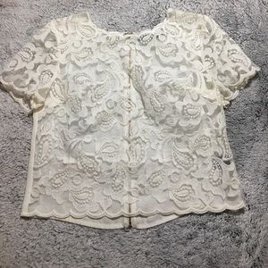 Ark & Co top small