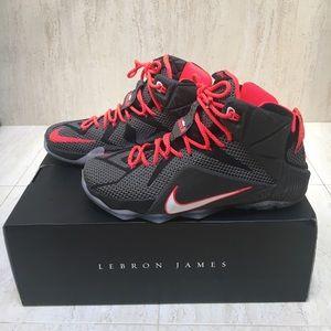 Authentic LeBron 12s Court Vision