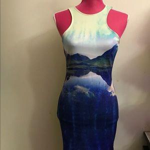 H&M Bodycon Tank Dress
