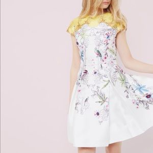 Ted Baker Yellow and White Floral Dress NWT