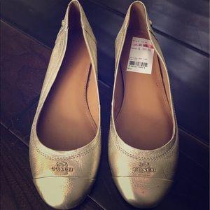 Gold Coach Ballet Flats