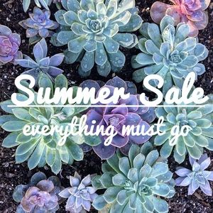 Other - Summer Sale