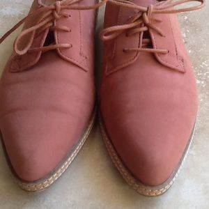 silence + noise  Oxfords EUC