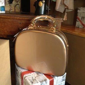 🆕Champagne Handbag