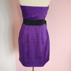 Express Dresses - EXPRESS Strapless Purple Dress Brand New