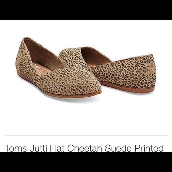 Toms Shoes   Toms Cheetah Print Jutti