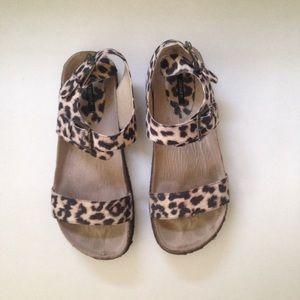 Foverer 21 Printed Birkenstock Sandals