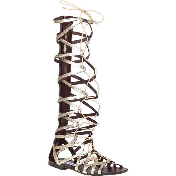 ba4e86a20fe Steven Madden Hercules Gladiator Sandals