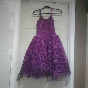 Other - Purple princess party/ great for dress up