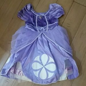 Disney Princess Sofia costume