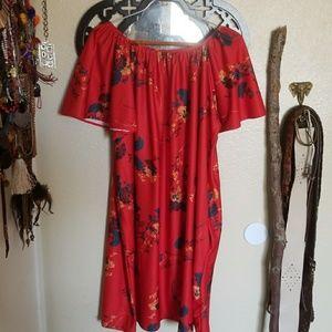 Vintage house dress.