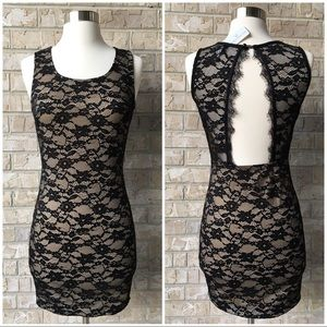 NWT Windsor Black Nude Lace Bodycon Dress Size S