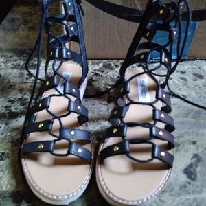 STEVE MADDEN Maybin Gladiator Leather Sandal 5.5