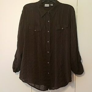 Chico's Size 3 (XL 16) Sheer Brown Top