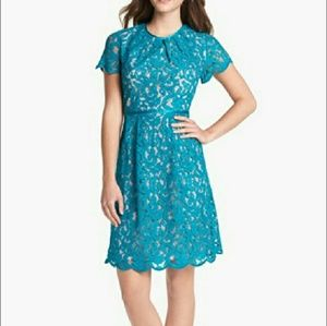 Adrianna Papell Lace Overlay Dress