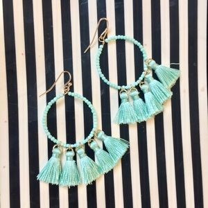 Jewelry - NWT Fringe Tassel drop earrings Mint Green