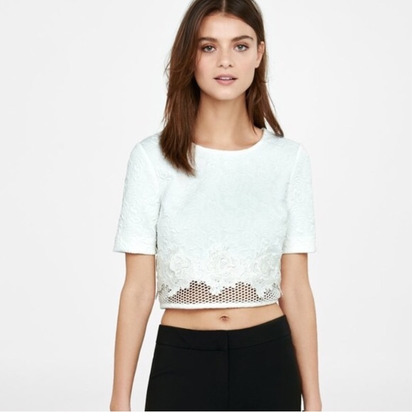 c1c324769eb6f Express White Floral Jacquard Lace Crop Top