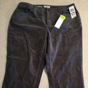 New Charter club pants size 12 S