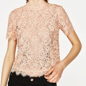 Zara light pink embroidered lace t- shirt