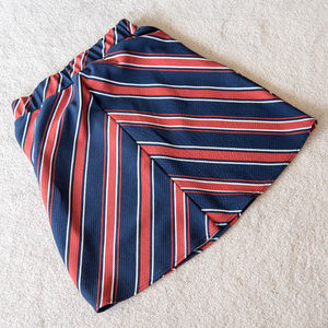 Striped A-line mini-skirt NWOT