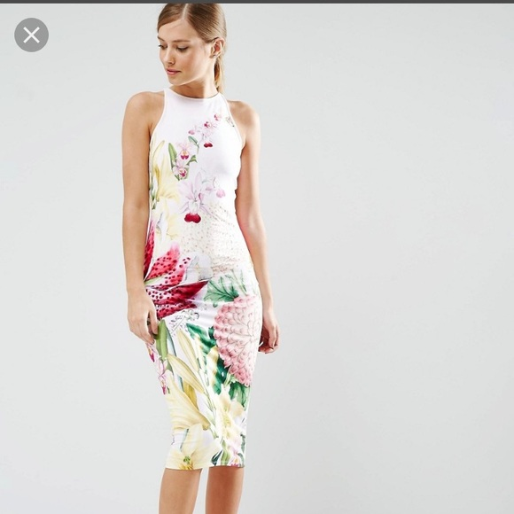 0d2880a89 🔥SALE🔥Ted Baker London Julee Encyclopedia dress