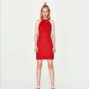 LAST DAYS! Zara lace dress