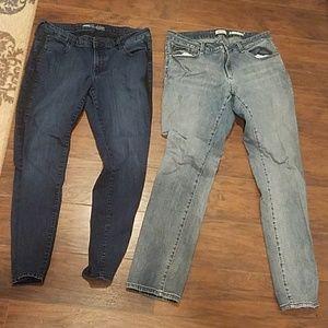Size 16 pants jeans elastic Jessica Simpson denim