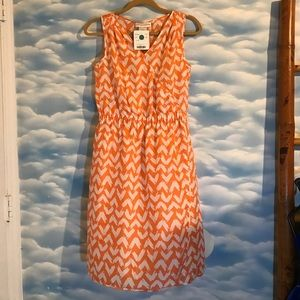 NWT Doncaster size 4p Orange and White Silk Dress