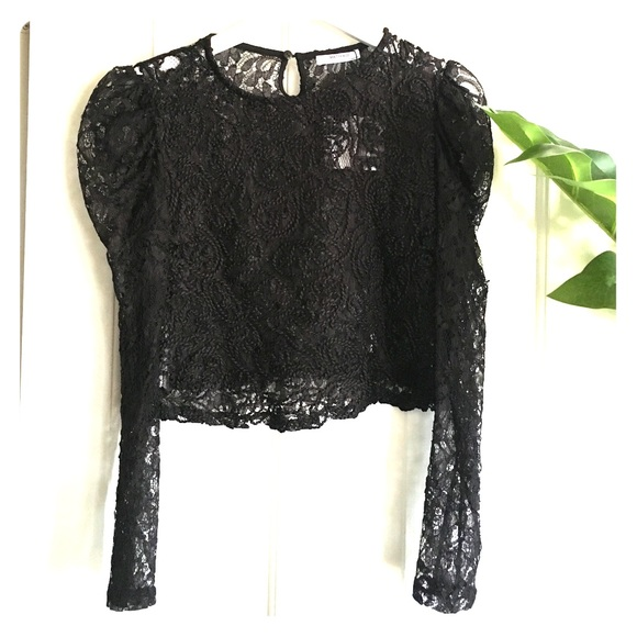 11ab37123ddbc  NWT  ZARA TRF EMBROIDERED LACE CROP TOP