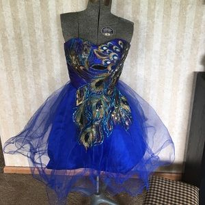 Special occasion dress with peacock design.