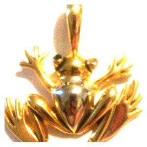 Jewelry - Frog pendant gold tone